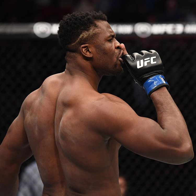 Итоги UFC FIGHT NIGHT 141: BLAYDES VS NGANNOU 2